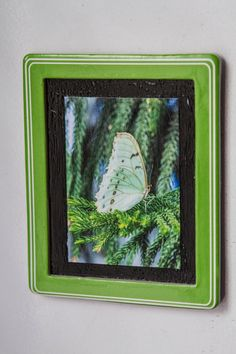 Fridge Magnet with photography print of a by NaturisticImages