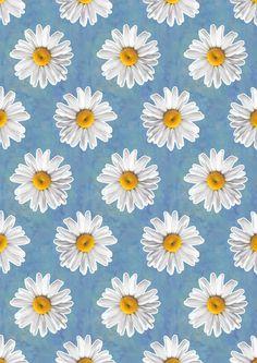 Daisy Blues - Daisy Pattern on Cornflower Blue