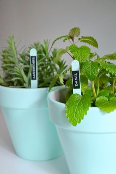 Easy #DIY plant mark