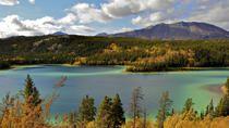 Skagway Shore Excursion: Full-Day Tour of the Yukon, Skagway