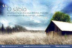 """""""O sábio envergonha-se dos seus defeitos, mas não se envergonha de os corrigir."""" Confúcio - Veja mais sobre Espiritualidade & Autoconhecimento no blog: http://sobrebudismo.com.br/"""