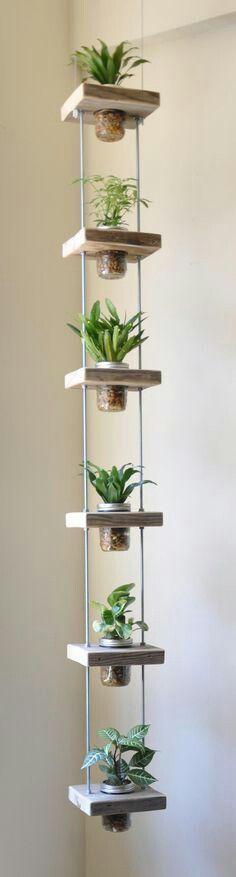 Hanging plants @kennylago please make this!
