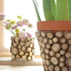 Standard pots that are sold in stores, sometimes become annoying and unattractive. But the flower pots that are with attractive design are very expensive. Therefore, the best option is to buy cheap standard pots for flowers and re-design it. With re-design banal and unobservable or simply overexpos