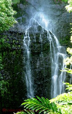 """Waterfallls on the """"Road to Hana"""", one of many."""