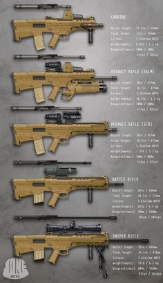 A beautiful family of assault rifles.