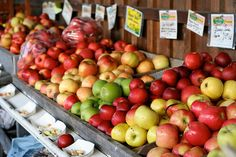 apples...look at those colors