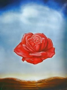 S.Dali Meditative Rose