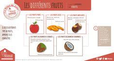 [#Infographies] Les différents #fruits : les 5 catégories de fruits