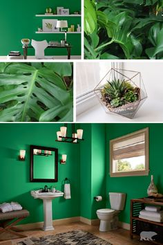 Color Of The Month Grlands Green Wall Colorgreen Paint