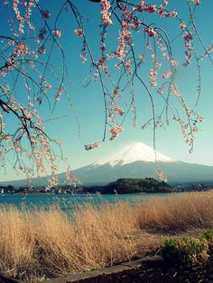 Mount Fuji at Shizuoka in Japan. What A Wonderful World, Beautiful World, Beautiful Places, Places To Travel, Places To See, Monte Fuji, Nice View, Wonders Of The World, Scenery