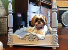 Four post dog bed for my baby shih tzus! Made from end table I found at goodwill.
