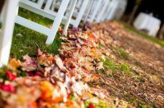 fall wedding inspiration | autumn leaves lining ceremony aisle