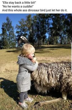 Ella stay back a little bit! No he wants a cuddle! And this whole ass dinosaur bird just let her do it, - iFunny :) Funny Animal Memes, Funny Animal Pictures, Cute Funny Animals, Stupid Funny Memes, Cute Baby Animals, Funny Cute, Animals And Pets, Hilarious, Top Funny