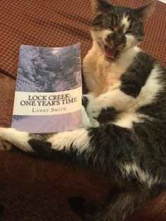 This story cracks him up! He LOVES his book! Save Gizmo's job! #laneysmith #author #readers #autograph #entertainment #booklovers #library #authorstravel #lockcreektravels #librarian #signedcopy #travels #mustreads #cat #kitty #savegizmosjob #laughingcat #bookpromo