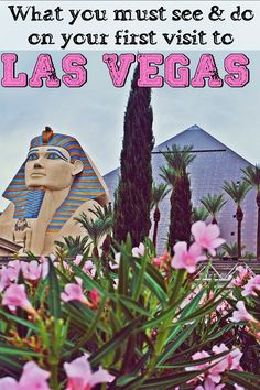What you must see&do on your first visit to Las Vegas, Nevada   Las Vegas or The Sin City is the biggest epicenter for gambling in the world. Is that place that you hope to visit at least once in a lifetime and that occupies a leading position in the top of your bucket list until you get to mark it off. Desert oasis of Nevada is the largest city in the state and also the capital of Clark County.
