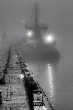 Mist by Ton Heijnen, via 500px