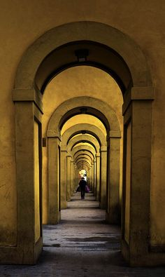 ***CLICK IMAGE*** September 30, 2014 - The Vasari Corridor , Firenze Sept, 2014 They are usually thousands of tourists walking through and along the Vasari. I was very lucky to be  able to capture the Vasari with  only one person in it :))  Thank you my friends for viewing and comments.