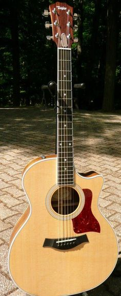 47 best taylor guitars images in 2013 taylor guitars acoustic guitars acoustic guitar. Black Bedroom Furniture Sets. Home Design Ideas