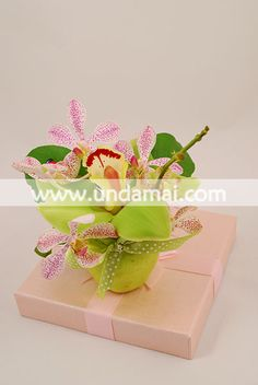 MARTISOR cu doua tipuri de Orhidee in mar verde Ralph Waldo Emerson, Planter Pots, Green
