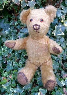 Adorable Inquisitive Vintage 1920s-30s Golden Mohair Jointed Teddy Bear - 12""