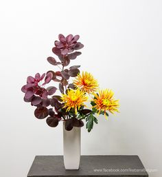 Ikebana by: Rosemary Material:Cotinus, Chrysanthemum First time making a Nageire arrangement