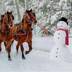 Wells Fargo Snowmen 60 COLOUR v02 - YouTube. I really like this ...