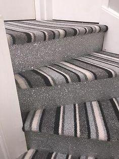 Best Glitter Walls Border Black Carpet New Gym Extravaganza 400 x 300