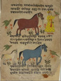 Eastern India manuscript page India Painting, Music Writing, Indian Elephant, Piece Of Music, Initial Letters, Illuminated Manuscript, Parrots, Indian Art, Art And Architecture