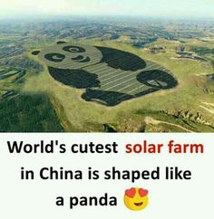 You dont say But its preety cool i mean its china. I'm pretty sure that's Po from Kung Fu Panda Some Amazing Facts, True Interesting Facts, Interesting Facts About World, Intresting Facts, Unbelievable Facts, Amazing Places On Earth, Beautiful Places To Visit, Cool Places To Visit, Places To Travel