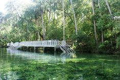 Blue Spring State Park: 2,600+ acres. Largest spring on the St. John's River. Designated manatee refuge to West Indian Manatees. No swimming during manatee season, approx mid-November thru March. Hundreds of manatee can be viewed from overlooks. Campground: Limited # 40'sites. 50amp; $24/night (excl discounts, attribute fees (electrical hook-ups/water hook-ups), taxes or incremental charges). $17.75 cancellation fee. One hr N of DisneyWorld, Orlando.
