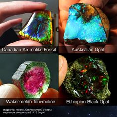 Essentially, Geology is the study of the materials that Earth is constructed of, how those materials are structured, and what processes. Minerals And Gemstones, Rocks And Minerals, Cool Rocks, Watermelon Tourmaline, Rocks And Gems, Stones And Crystals, Gem Stones, Pretty Pictures, Fun Facts