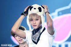 Tao Panda hat SMweek