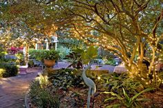 The Courtyard at Lake Lucerne - A historical inn in Orlando. Beautiful setting for my ideal wedding!