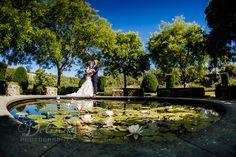 Wedding Photographers – Dolinny Photography | Wedding Photographer, wedding Ireland, Dublin, Cork, Kilkenny Newpark Hotel Kilkenny, Photographer Wedding, Wedding Photography, Hotel Wedding, Wedding Pictures, Dublin, Cork, Photographers, Ireland
