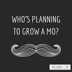 Who do YOU know taking part in Movember this year? #movember #mustache