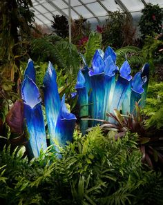 Jason Gamrath - glass flowers