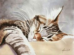 CyBeRGaTa - Cats, Memes, New Mexico: Photo - watercolour, tabby cat (hva) Watercolor Cat, Watercolor Animals, Watercolor Paintings, Watercolors, Animal Paintings, Animal Drawings, Cat Drawing, Art And Illustration, Pet Portraits