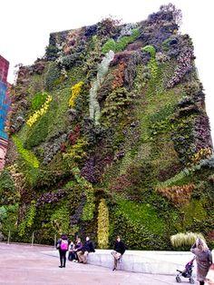 Vertical garden madrid, Spain | Read More Info
