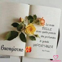 Italian Greetings, Phone Messages, Good Morning, Place Card Holders, Crafts, Linguine, Genere, Gandhi, Night