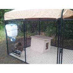 Tucker Murphy Pet Broaddus Frame with Heavy-Duty Wire Mesh and Gate Yard Kennel Contemporary Dog Houses, K9 Kennels, Wood Dog House, Insulated Dog House, Dog Pen, Pet Resort, Pet Safe, Pets, Tile Flooring
