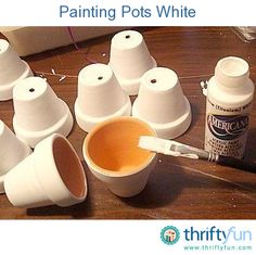 Terra cotta pots are inexpensive and can be painted and transformed into pretty decorative containers. This is a guide about painting terra cotta clay pots.