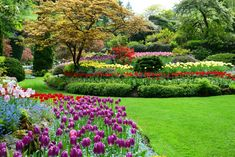 Butchart Gardens, Romantic activities in Victoria, things to do in Victoria, Flower Gardens, Vancouver Island activities,