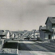 """İlk inşa edildiği zamanlarda Levent... Halk arasında """"dağ başına ev mi yapılır"""" eleştirileri almış fakat 1950'li yıllarda oldukça yüksek sayılabilecek rakamlara evler satılmış. #ıstanbul #besiktas #1950s"""
