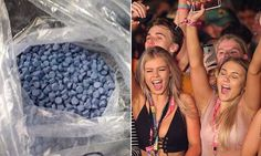 Massive haul of 24000 pills 'bound for schoolies' seized in Queensland