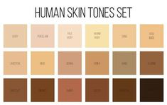 Creative vector illustration of human skin tone color palette set isolated on transparent background. Abstract concept person face, body complexion graphic element for cosmetics How To Choose Foundation, Skin Color Chart, Skin Color Palette, Skin Undertones, Colors For Skin Tone, Neutral Skin Tone, Pale Skin, Affinity Photo, Book Writing Tips