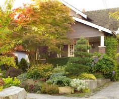 Create Privacy:  Create a sense of privacy and illusion in a front yard by planting some taller specimens near the sidewalk. Airy plants will create a screen that allows visitors to peek through - without having a wide-open view...