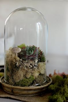 #5: HÄRLIGA Glass Dome with Base — Top 10 IKEA Hack Predictions for 2017.  Terrariums were a big trend in 2016 and will easily continue into 2017, with this easy way to pull some greenery into your indoor space, especially in blah winter months. Learn how to make several different varieties from eHow.