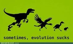 sometimes, evolution sucks