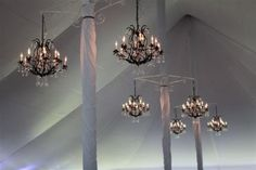 Chandeliers with dimmers create mood lighting under the tent. Wrought Iron Chandeliers, Black Chandelier, Tent Wedding, Tents, Ceiling Lights, Mood, Crystals, Lighting, Create