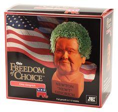 Chia Newt Gingrich gift box